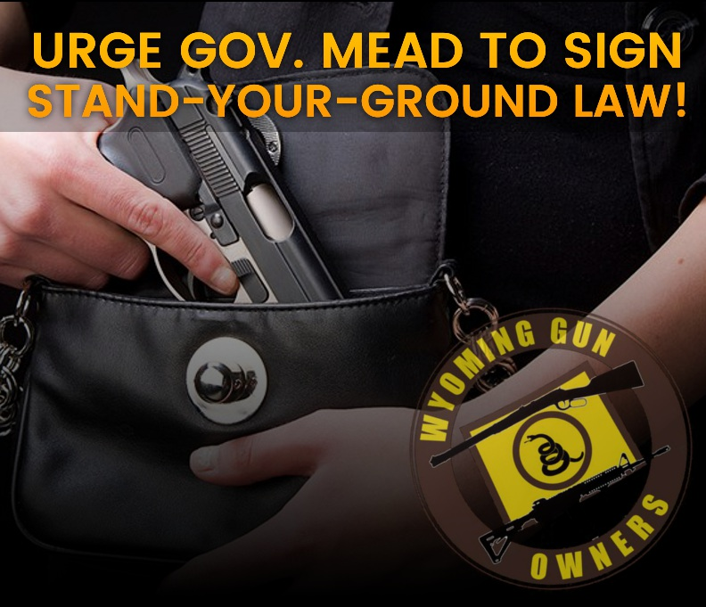 Urge Governor Mead to Sign Stand-Your-Ground Into Law!