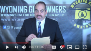 Who Will Fight for Gun Owners as Governor?